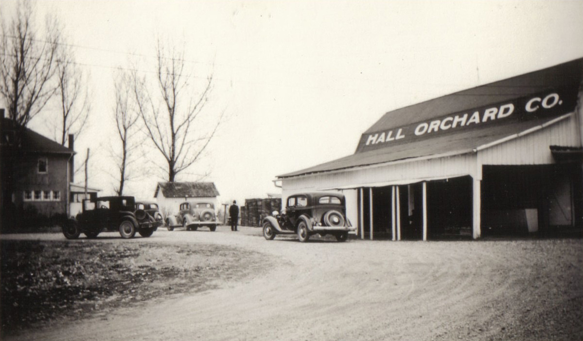 Hall Apple Orchard 1934